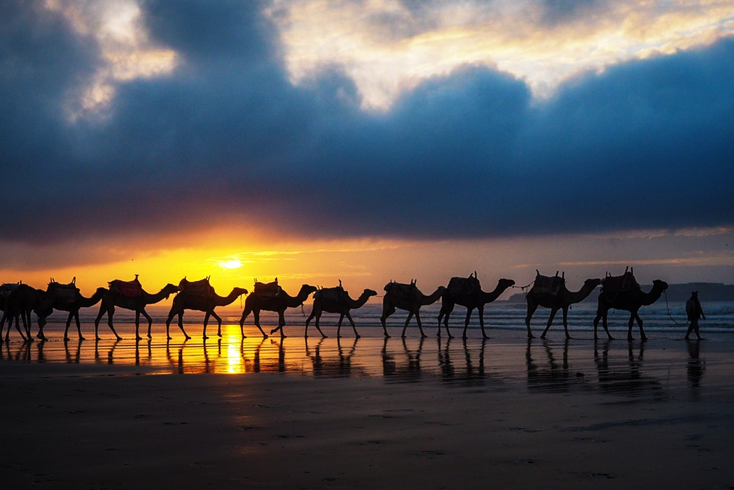 MOROCCO PHOTOGRAPHY HOLIDAYS IRELAND